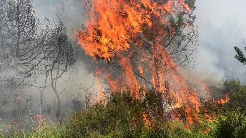 42 حريقا خلال ثلاثة أيام