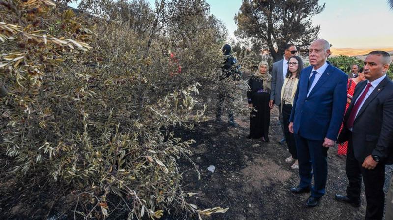 سعيّد: الحرائق مفتعلة... وأطراف تحاول الإستفادة منها سياسيا