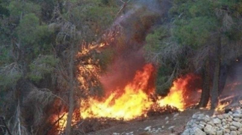 اندلاع حريق بجبل الناظور