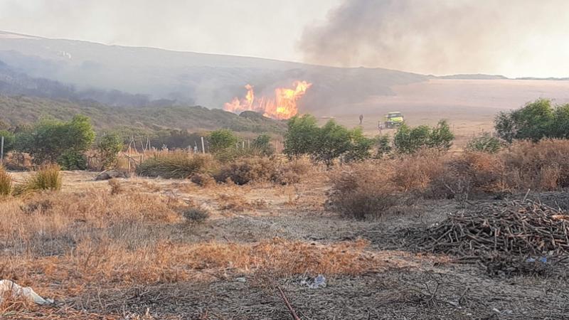 بنزرت: السيطرة على حريق دار الجنة