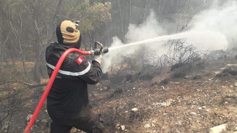 باجة: السيطرة على حريقين بعمدون ونفزة