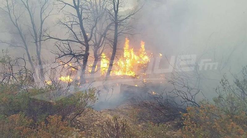 تواصل عملية إطفاء حريق دوار منارة