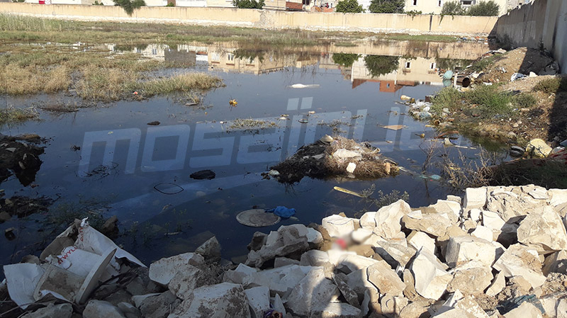 القيروان: سقوط جزء من سور مصنع الدخان يكشف كارثة بيئية