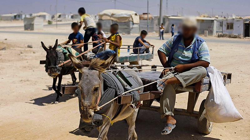 المصاعب الاقتصادية تعيد الحمير للخدمة في شوارع عدن