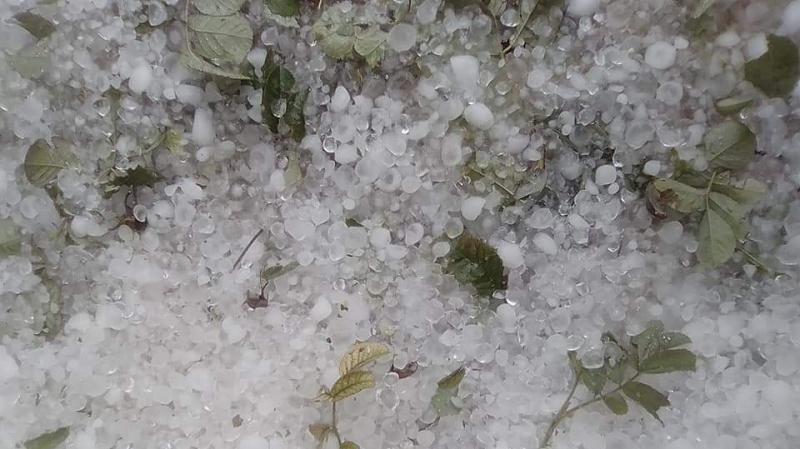 جبل مغيلة: تساقط كميات كبيرة من البرد