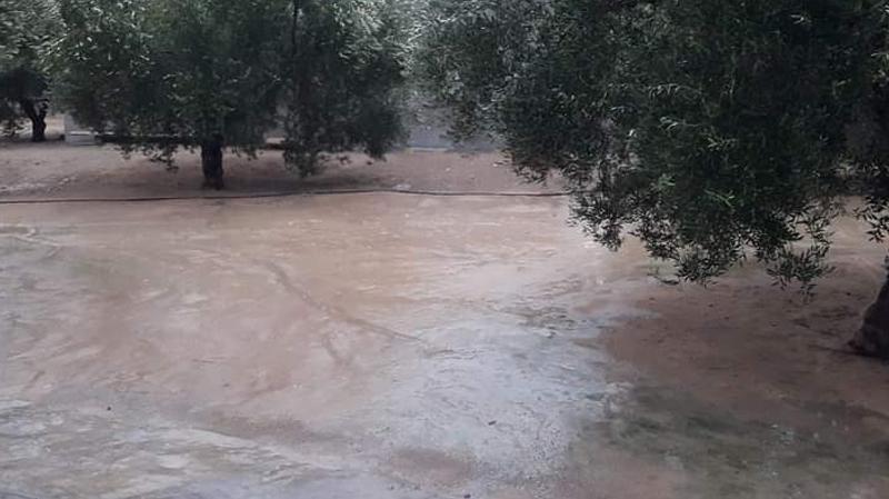 تهاطل كميات هامة من الأمطار في القيروان