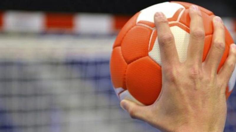 التركيبة الكاملة للإطار الفني والإداري لمنتخب كرة اليد