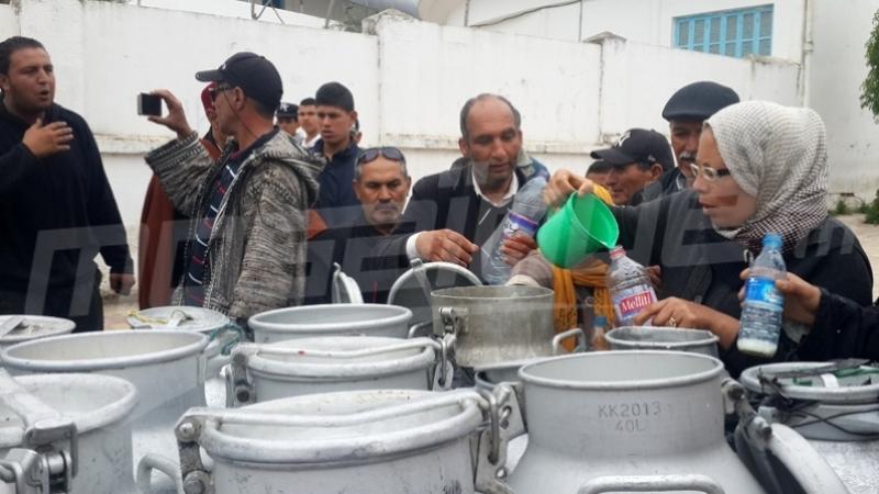 إضراب عام بثلاثة أيام في مراكز تجميع الحليب