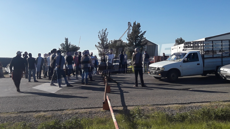 القيروان: الفلاحون يغلقون الطريق الوطنية بسبب نقص مادة الـ DAP
