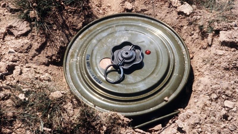الجزائر: مقتل سيدتين في انفجار لغم أرضي