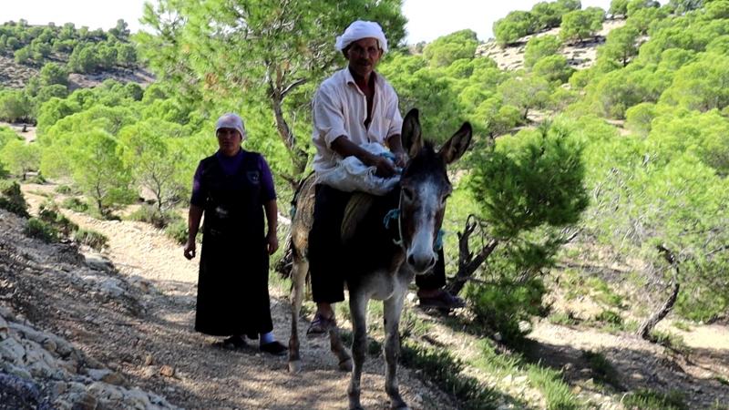 القيروان: رحلة دليلة لاحضار ''الزقوقو'' تكشف معاناة الفئات المهمشة