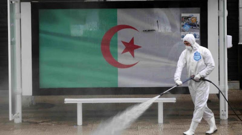 لأول مرة في الجزائر.. 910 إصابة بكورونا و14 وفاة في يوم واحد