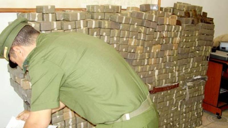 الجزائر: حجز 16 قنطارامن الزطلة وأكثر من ربع مليون قرص مخدّر