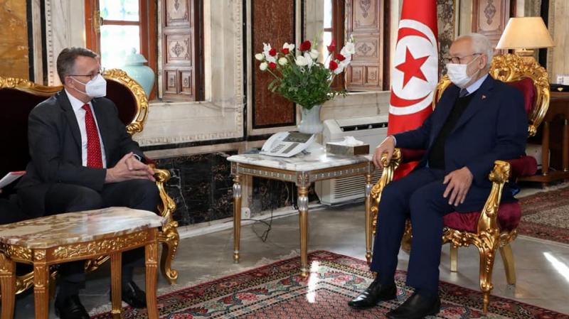 الغنوشي يحث سفير ألمانيا على بعث جامعة ألمانية بتونس