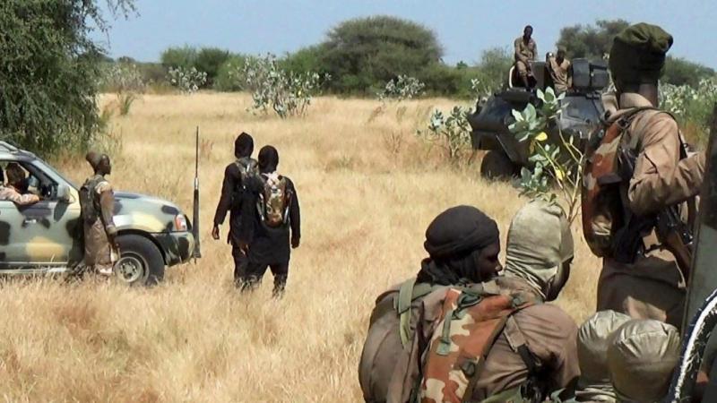 نيجيريا: مقتل 43 مزارعا ذبحا على يد مقاتلي جماعة 'بوكو حرام' الإرهابية