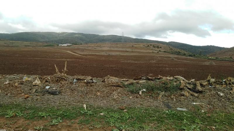 جندوبة : نقص الأسمدة يعيق انطلاق موسم الزراعات الكبرى
