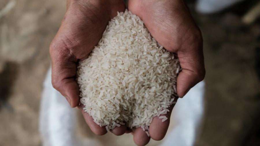 بن عامر:  الأرز الملوث بمادة ''الأفلوتكسين'' معزول في المخازن
