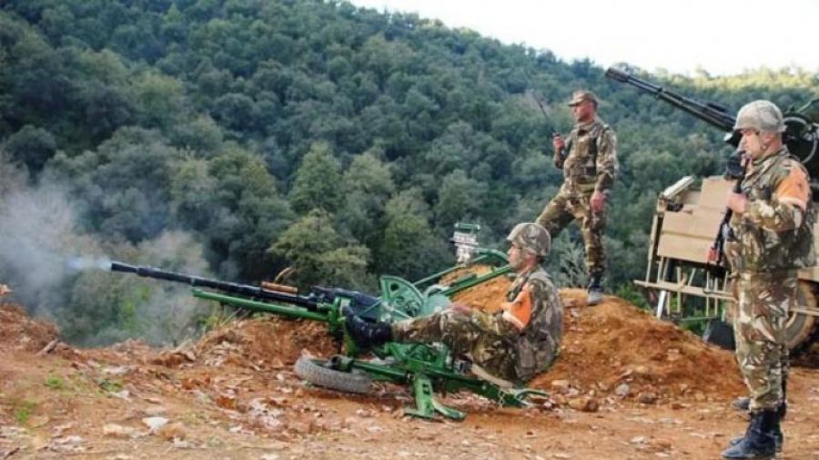 الجزائر: القضاء على إرهابي وإيقاف آخرين