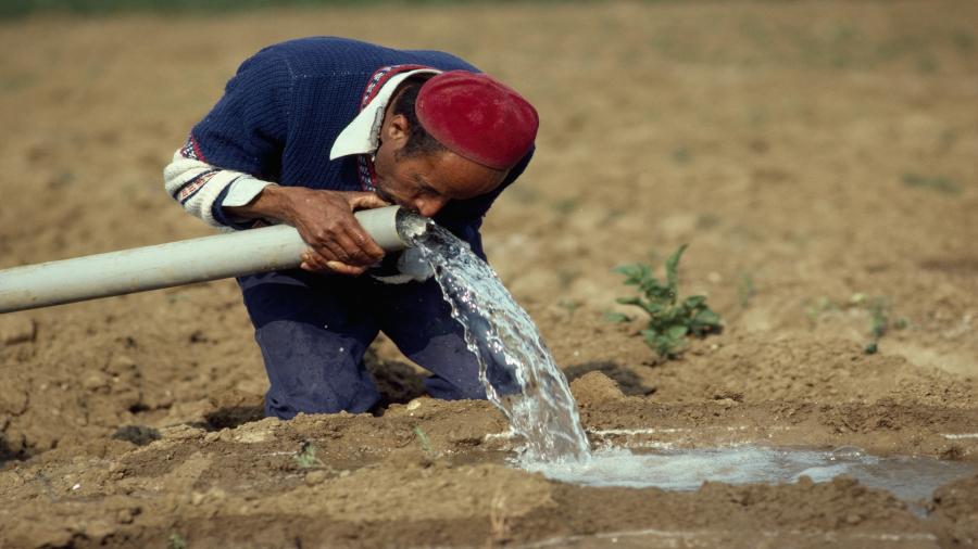 القيروان: الشراردة تحت وطأة العطش منذ أكثر من شهر..