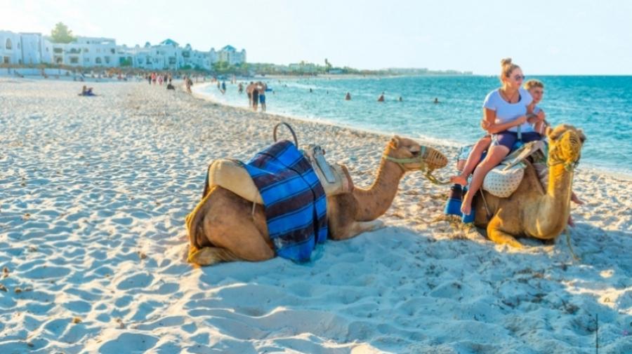 درة ميلاد: تونس فقدت الكثير من إشعاعها كوجهة سياحية