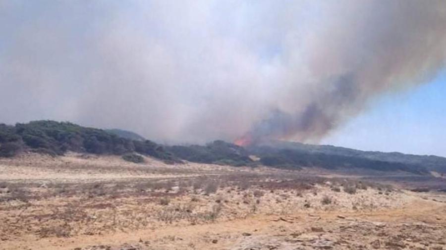 بنزرت: السيطرة على حريق غابة الرمال