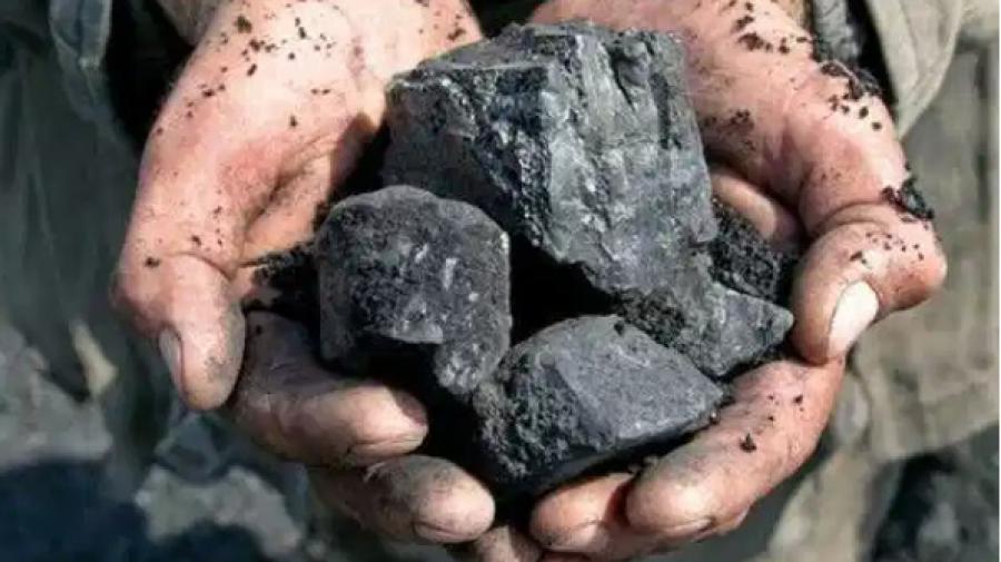 بسبب حرائق الغابات: فتوى تُحرّم شراء الفحم في الجزائر