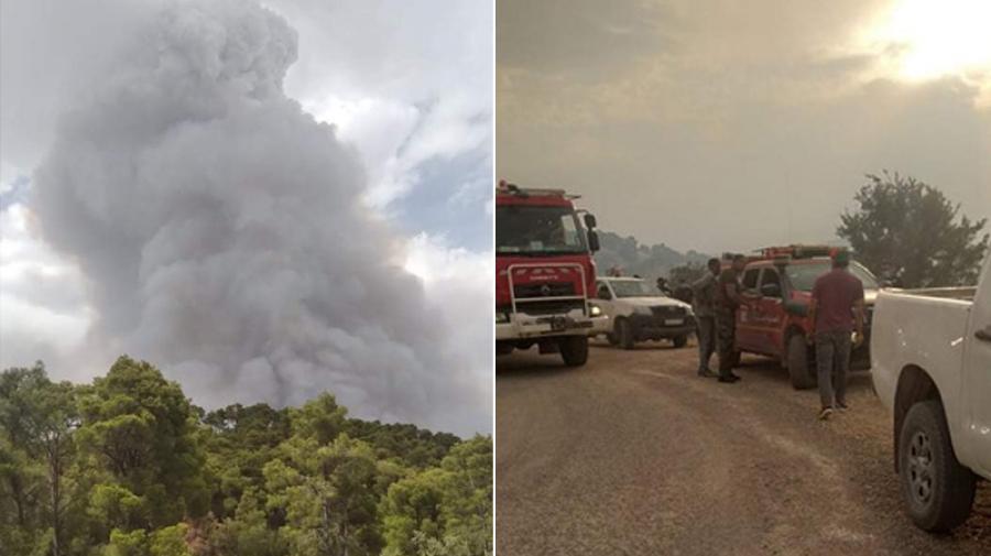 الجيش الوطني يُعاضد مجهودات إخماد حريقي مرتفعات الكاف وجندوبة