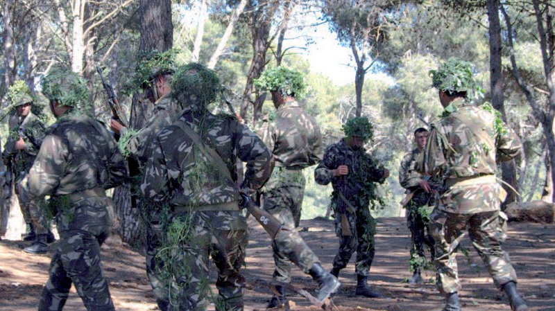armée-algérienne