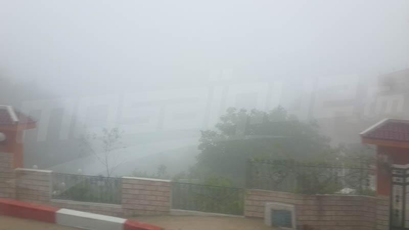 Brouillard  Aïn Drahem