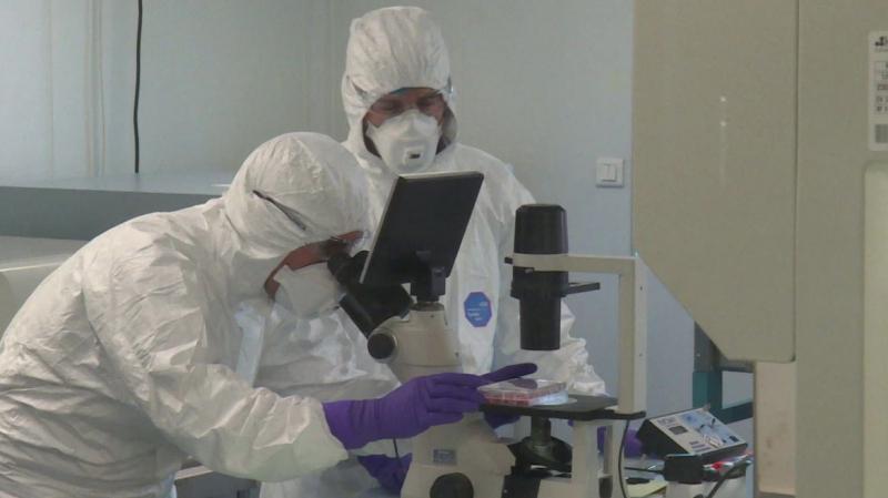 chercheurs-arn