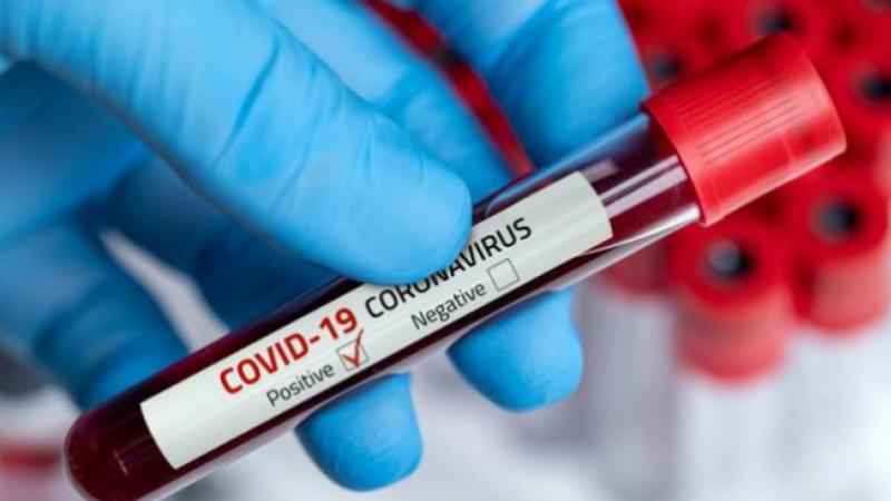 coronavirus-tozeur