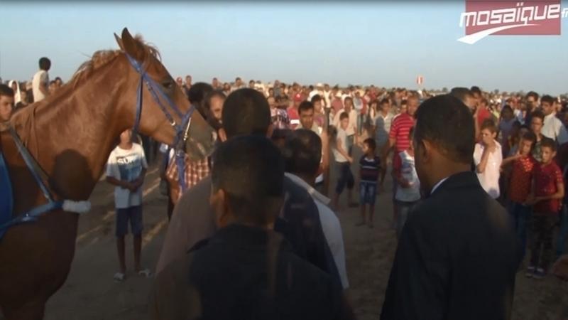 festival-equestre