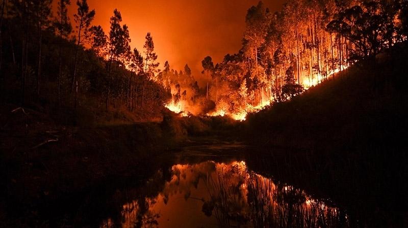 incendie-portugal