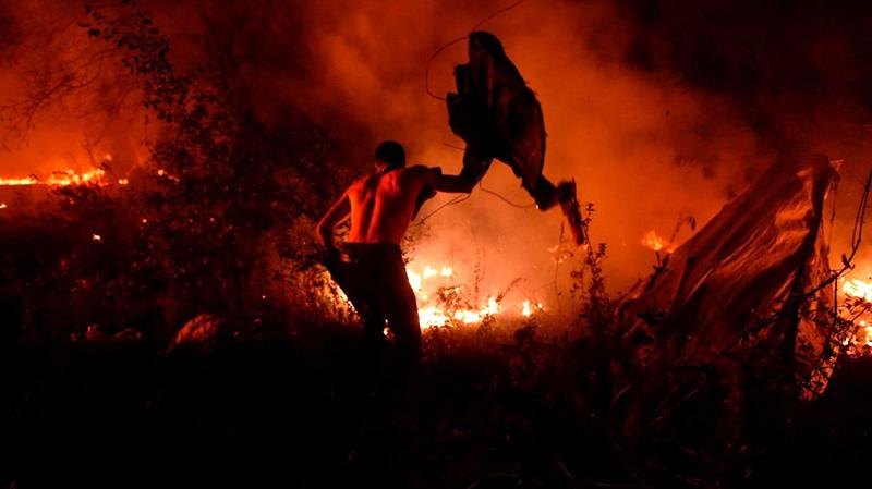 incendie portugal