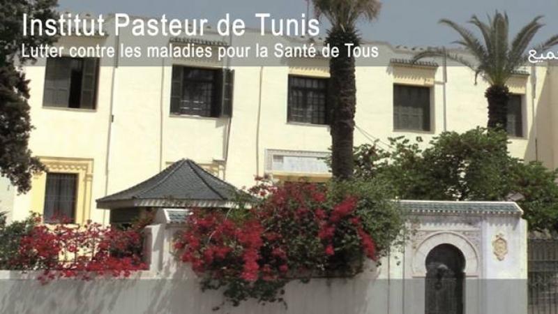 Institut Pasteur: Lancement de tests sérologiques SARS COV2