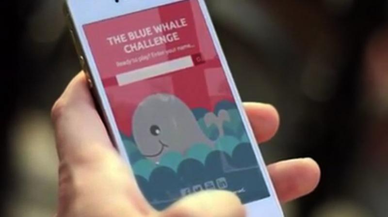 Kairouan : deux collégiennes ont survécu au jeu de 'la baleine bleue'