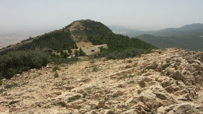 Kasserine : explosion d'une mine à Jebel Salloum, un citoyen blessé