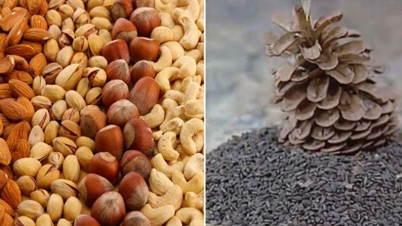 L'ODC appelle à boycotter le zgougou et les fruits secs