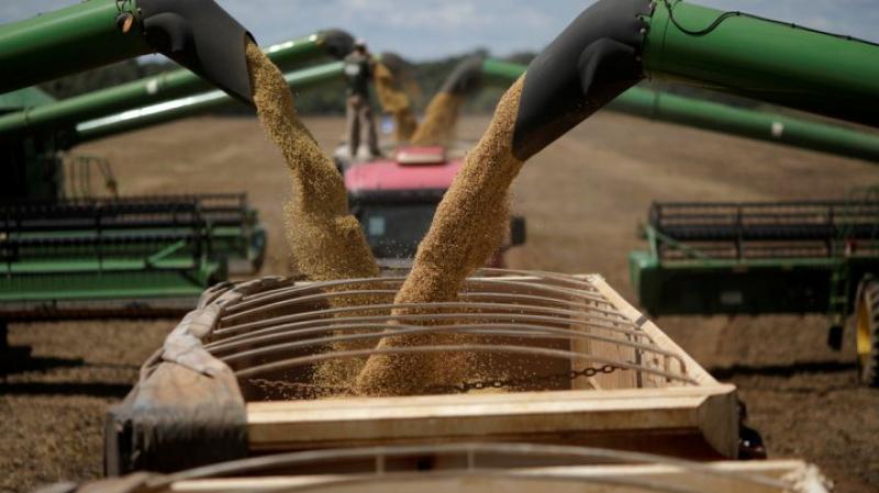 La Tunisie a importé  plus de 100 mille tonnes de céréales