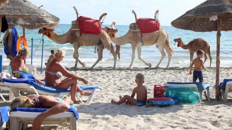 Les recettes touristiques en baisse de 36%, à fin mai 2020