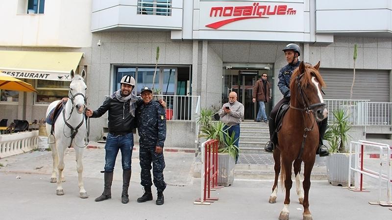 midox-cheval