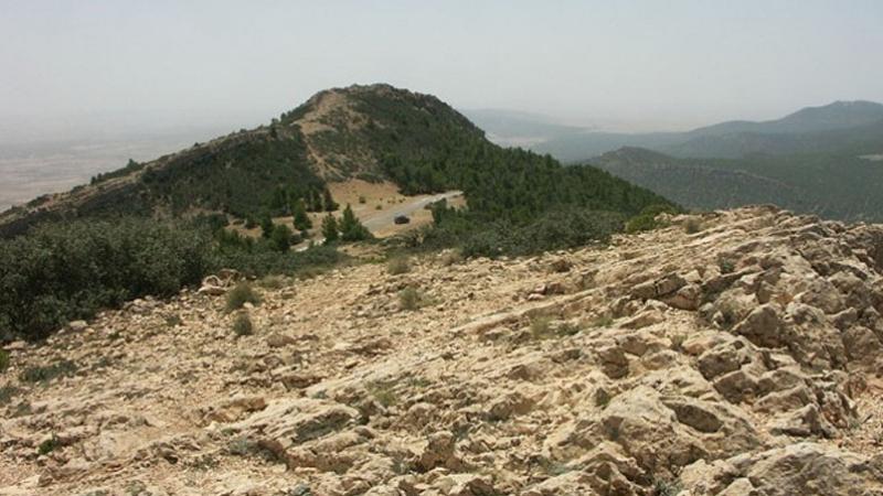 mont salloum