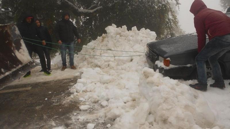seliana-neige