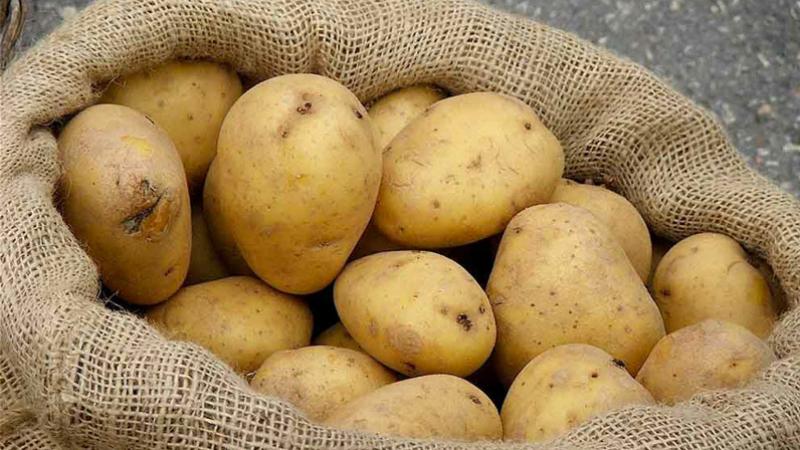 Sidi Bouzid : Saisie de 10,5 tonnes de pomme de terre