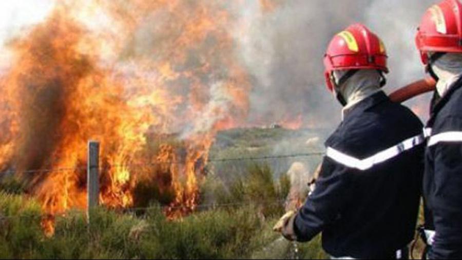 Un incendie maîtrisé à Siliana