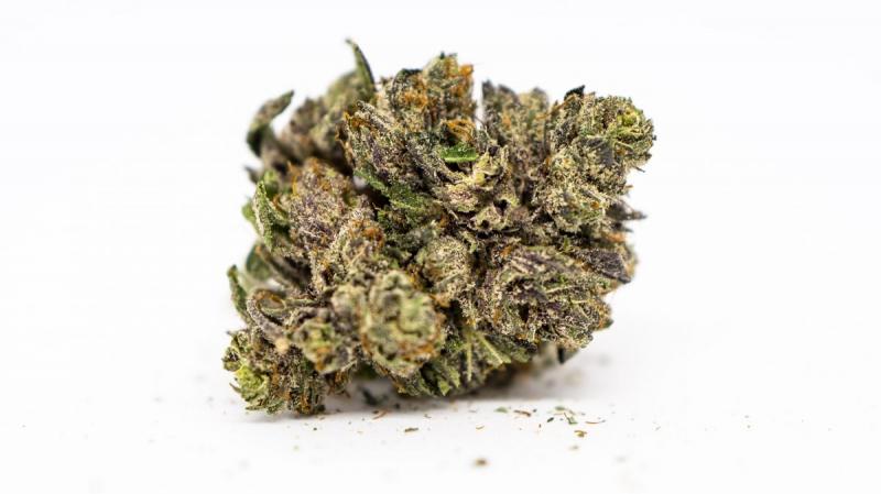 Une société canadienne recrute des dégustateurs de Cannabis