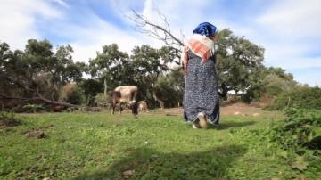 وزارة الفلاحة: 19%فقط من الريفيات لهن مورد رزق خاص