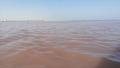 نفوق أسماك وتغيّر لون البحر في سيدي منصور:الخبراء يفسّرون