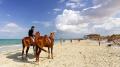 Djerba parmi les villes les plus visitées pour le loisir