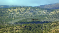 Chaâmbi : des terroristes ont pris en otage 4 bergers jeudi 12 avril
